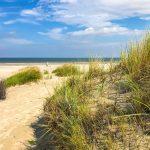Strand Juist mit Dünen