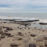 Strand an der Westspitze auf Juist mit Torfresten des alten Inselkerns